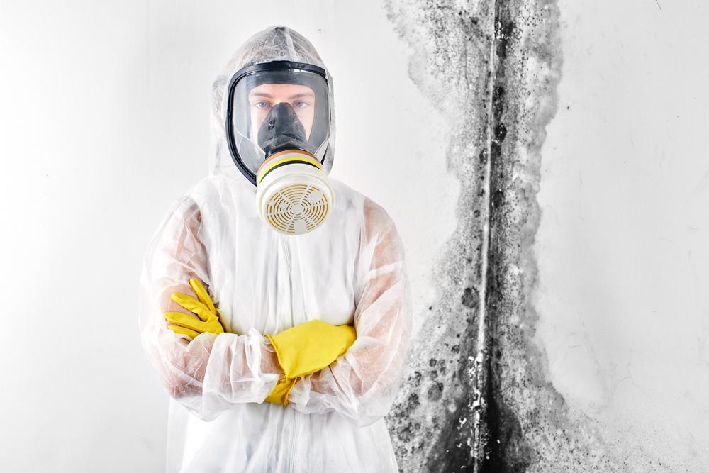 Mold Inspection Service in Boca Raton, FL