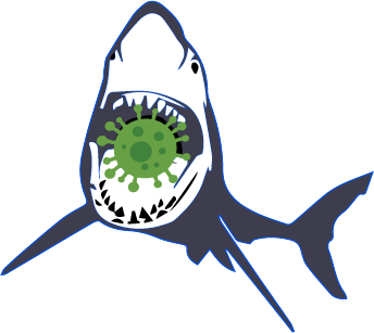 Mold Shark