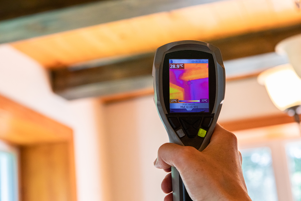 Thermal imaging during mold inspection
